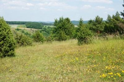 Hönselberg