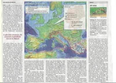 Ameisen sollen Erdbeben voraussagen