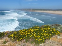Algarve Bild 1.JPG