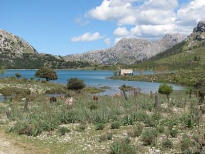 Cuber_Stausee_Mallorca_2014.04.21_kl.jpg