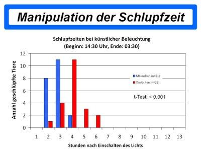 Manipulation Schlupfzeit
