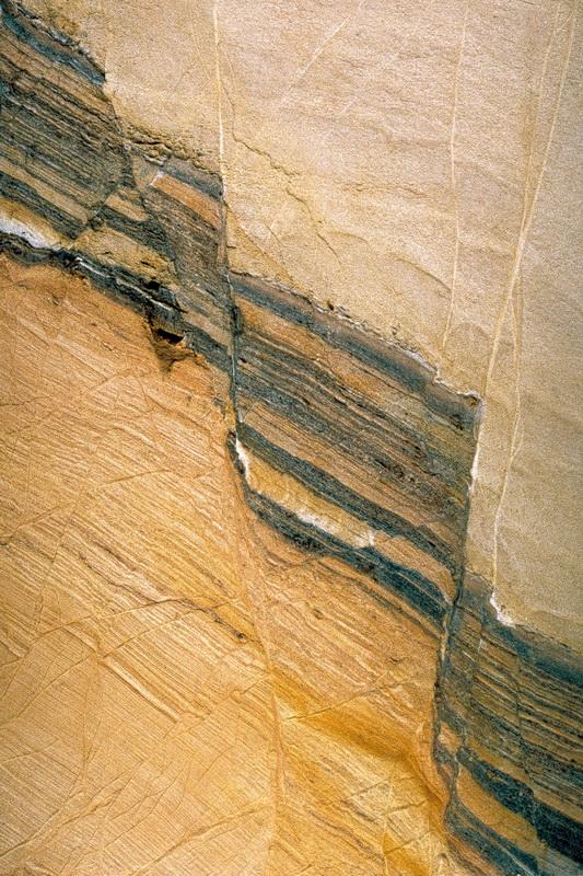 Holzkohleschicht